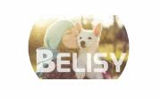 BELISY logo